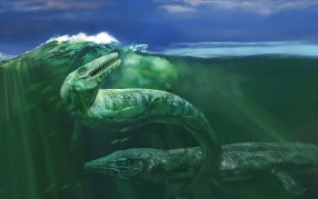 Animal - Plesiosaur Wallpapers and Backgrounds ID : 415767
