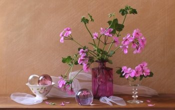 Photography - Still Life Wallpapers and Backgrounds ID : 416393