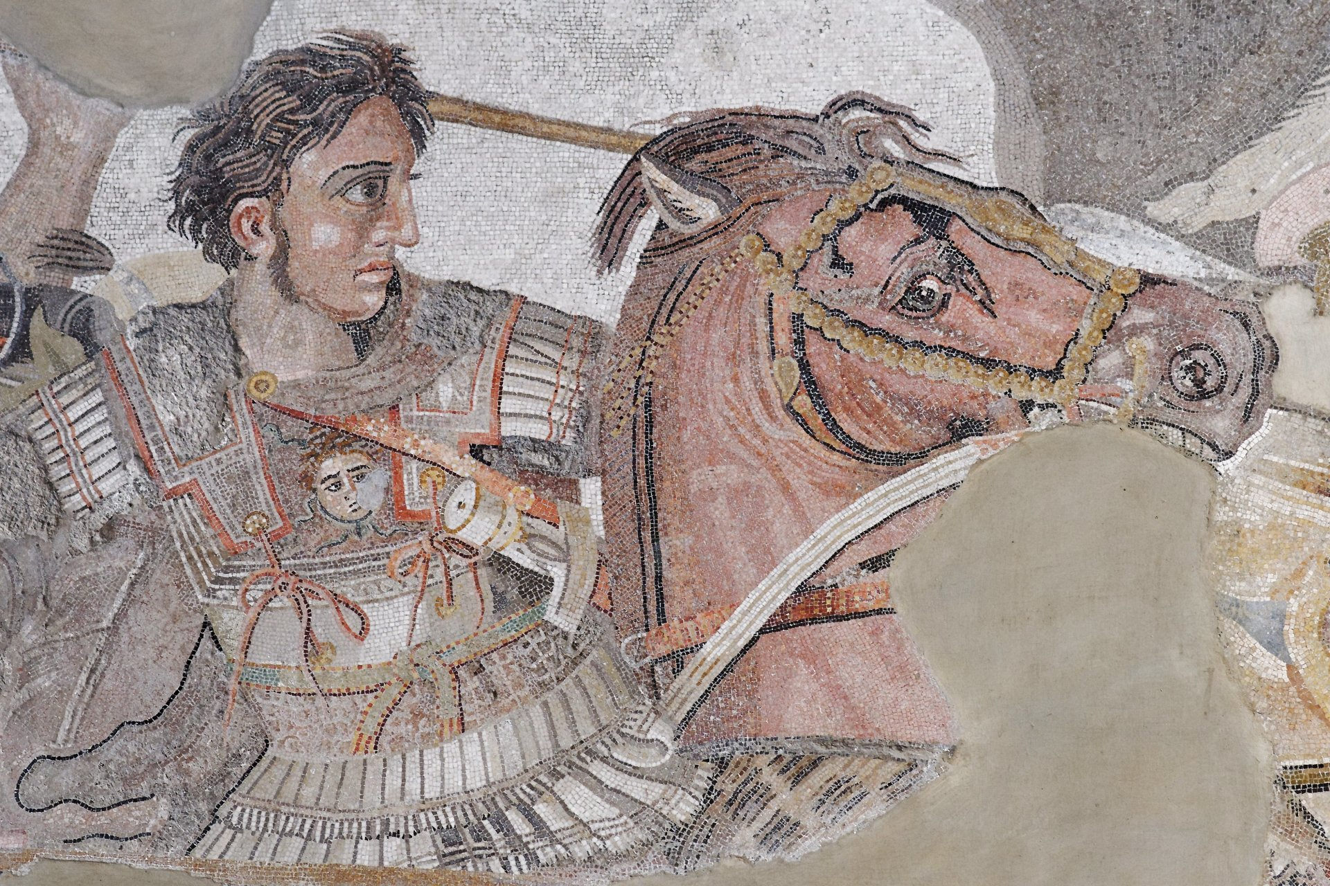 Men - Alexander The Great  Wallpaper
