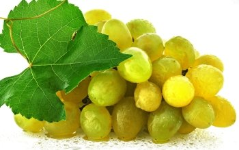 Alimento - Grapes Wallpapers and Backgrounds ID : 419608