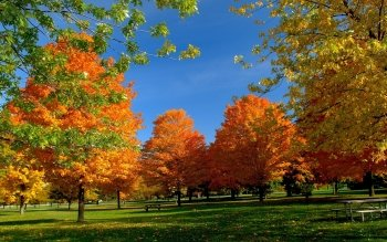Earth - Autumn Wallpapers and Backgrounds ID : 423308