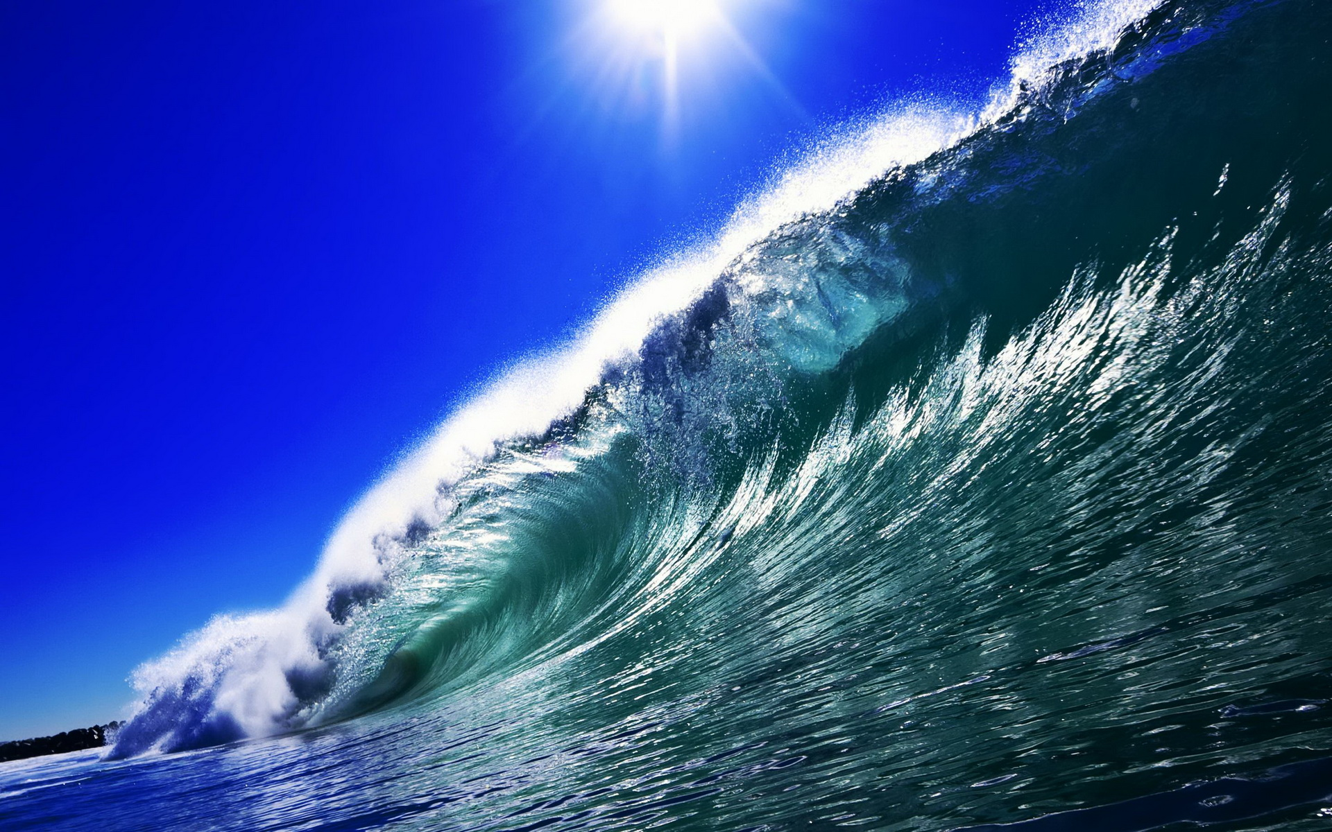 Catch The Wave Surf S Up Hd Wallpaper Background Image 1920x1200 Id 424973 Wallpaper Abyss