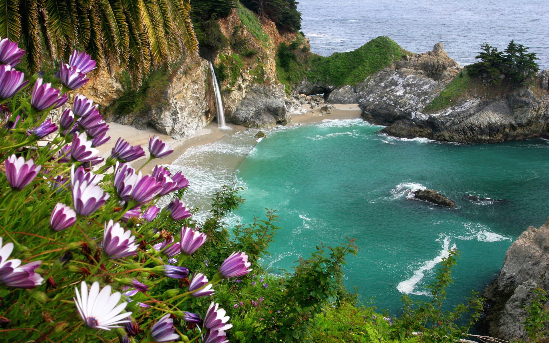 Earth - Mcway Falls  Beach Flower Water Coastline Earth Nature Waterfall Rock Wallpaper