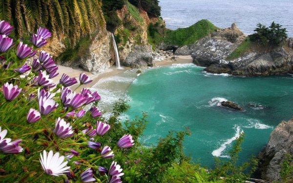 Earth Mcway Falls Waterfalls Nature Coastline Water Beach Flower Waterfall Rock HD Wallpaper | Background Image