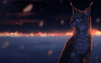 Artistisk - Lynx Wallpapers and Backgrounds ID : 430973