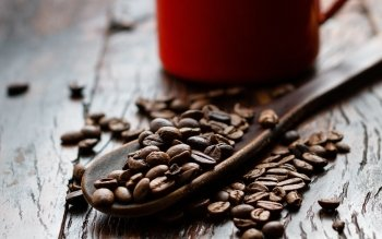 Alimento - Coffee Wallpapers and Backgrounds ID : 431104