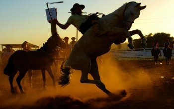 Deporte - Rodeo Wallpapers and Backgrounds ID : 431119
