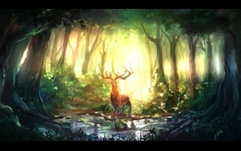 Fantasy - Forest Wallpapers and Backgrounds ID : 434776