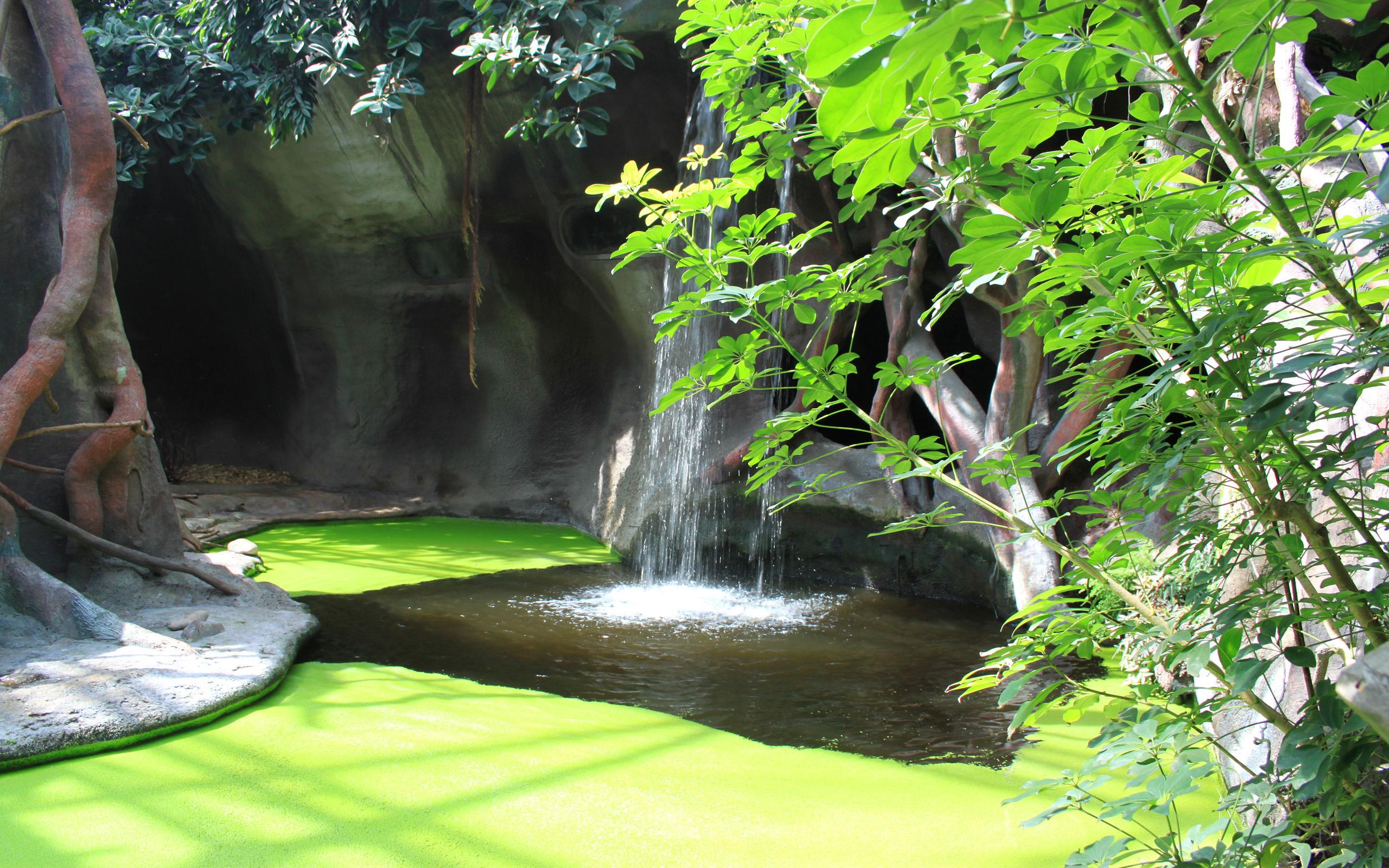 Jardin fonds d 39 cran arri res plan 2560x1600 id 436374 - Fond d ecran jardin anglais ...
