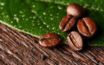 Food - Coffee Wallpapers and Backgrounds ID : 436946