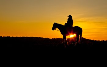Mannen - Cowboy Wallpapers and Backgrounds ID : 437478