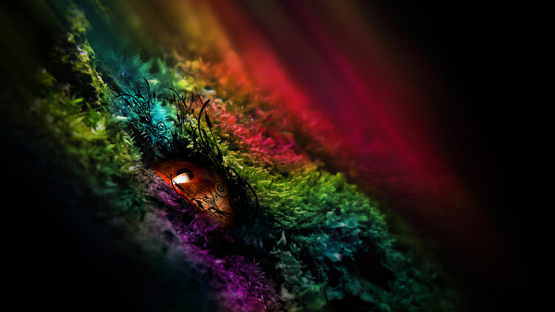 download wallpaper 1920x1080 colorful - photo #49