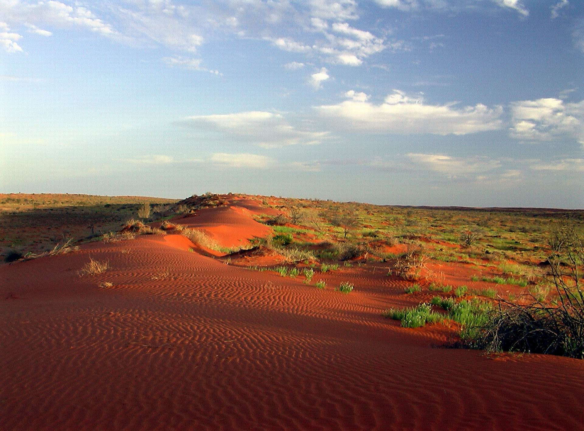 Simpson Desert HD Wallpaper