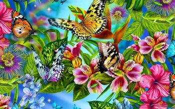 Animal - Butterfly Wallpapers and Backgrounds ID : 441675