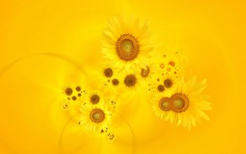 Terra - Sunflower Wallpapers and Backgrounds ID : 443234
