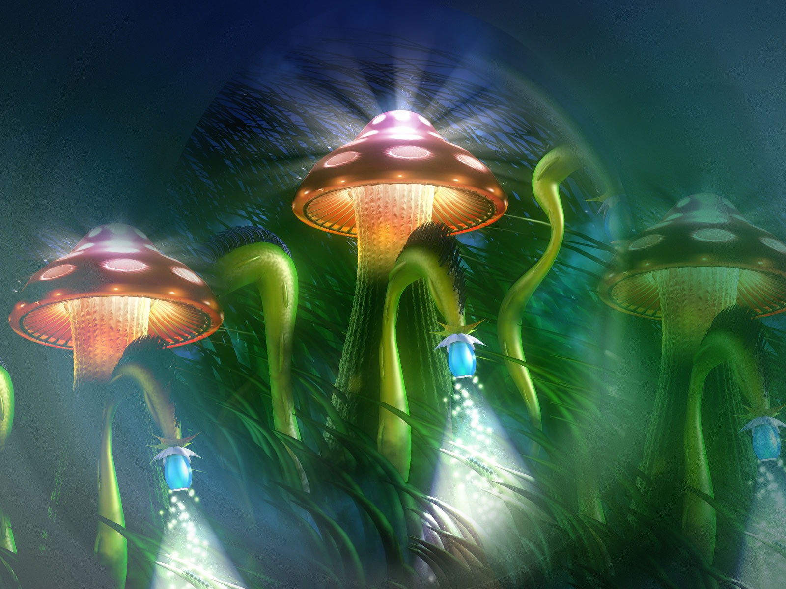 Mushroom computer wallpapers desktop backgrounds - Desktop wallpaper 1600x1200 ...
