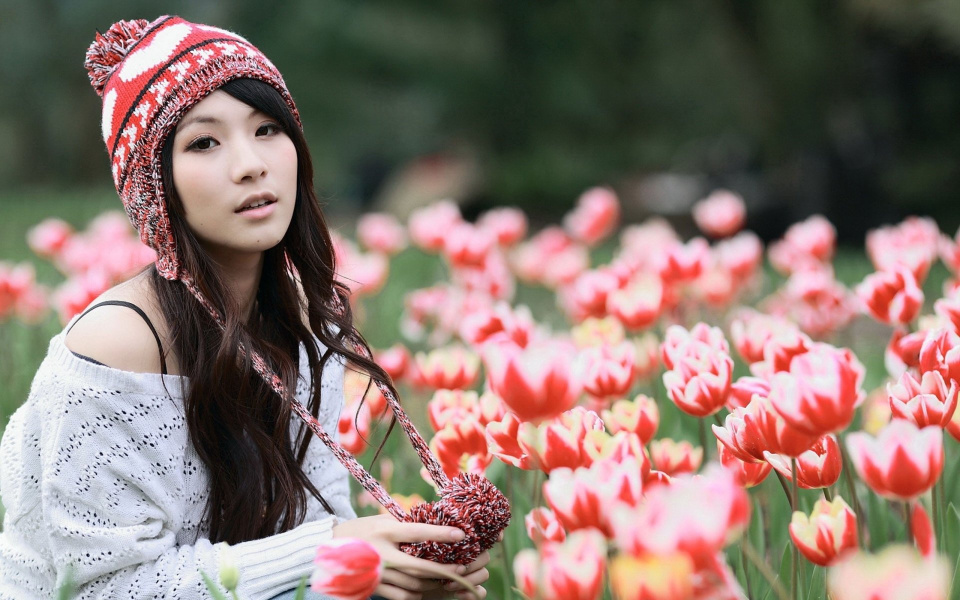 Wallpapers ID:447145