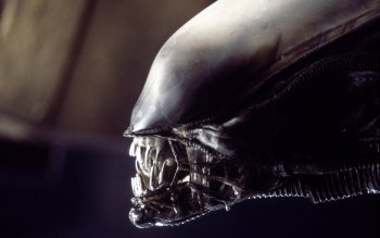 Movie - Alien Wallpapers and Backgrounds ID : 450048