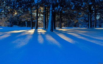 Earth - Winter Wallpapers and Backgrounds ID : 459697