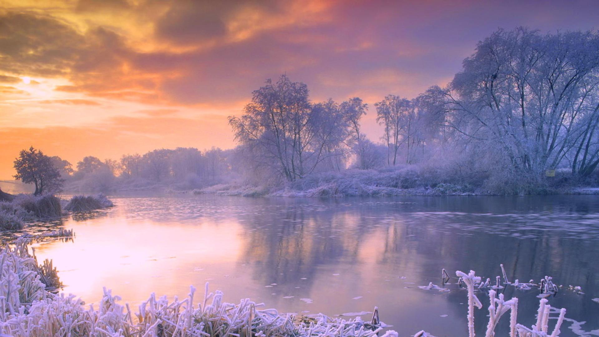 jordennatur winter bakgrund