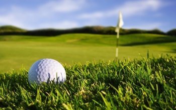 Sports - Golf Wallpapers and Backgrounds ID : 461545
