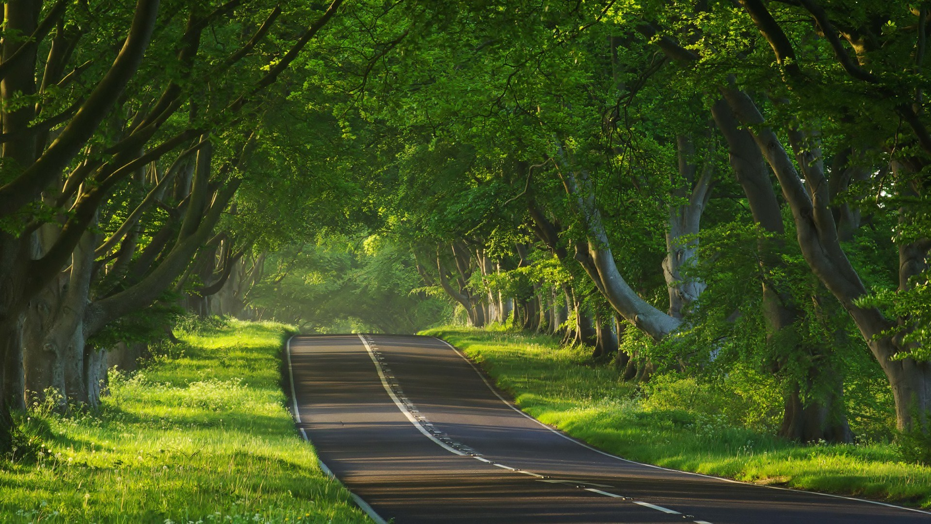 hdr landscape road full hd wallpaper and background