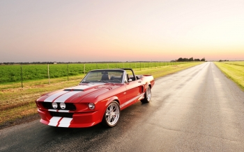Fahrzeuge - Ford Mustang Wallpapers and Backgrounds