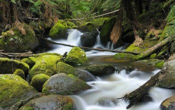 Earth - Stream Wallpapers and Backgrounds ID : 463337