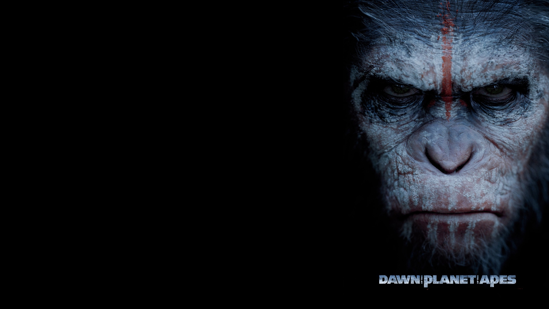 Planet Of The Apes Wallpaper: 29 Dawn Of The Planet Of The Apes HD Wallpapers
