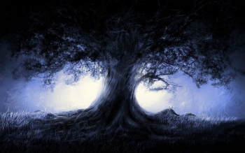 Dark - Tree Wallpapers and Backgrounds ID : 468297