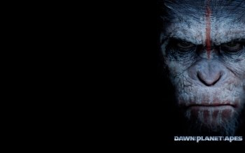 Movie - Dawn Of The Planet Of The Apes Wallpapers and Backgrounds ID : 468772