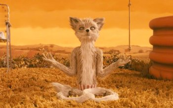 18 Fantastic Mr Fox Hd Wallpapers Background Images Wallpaper Abyss