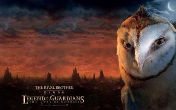 Film - Legend Of The Guardians Wallpapers and Backgrounds ID : 479561