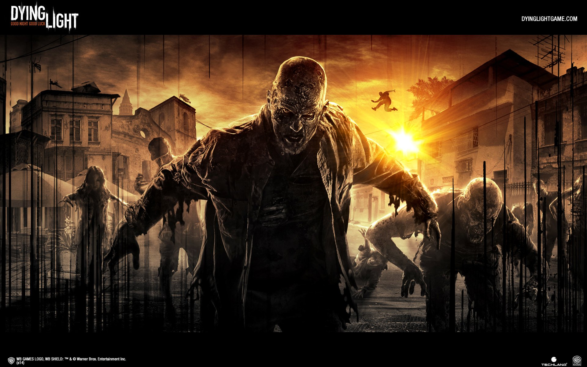 Video Game - Dying Light  Wallpaper