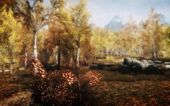 Video Game - Skyrim Wallpapers and Backgrounds ID : 486020