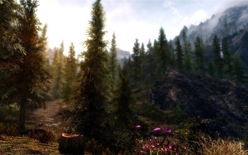 Video Game - Skyrim Wallpapers and Backgrounds ID : 486021