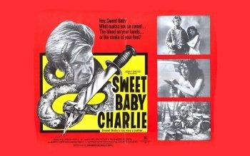 1 sweet baby charlie 高清壁纸 |温云超 桌面背景 –