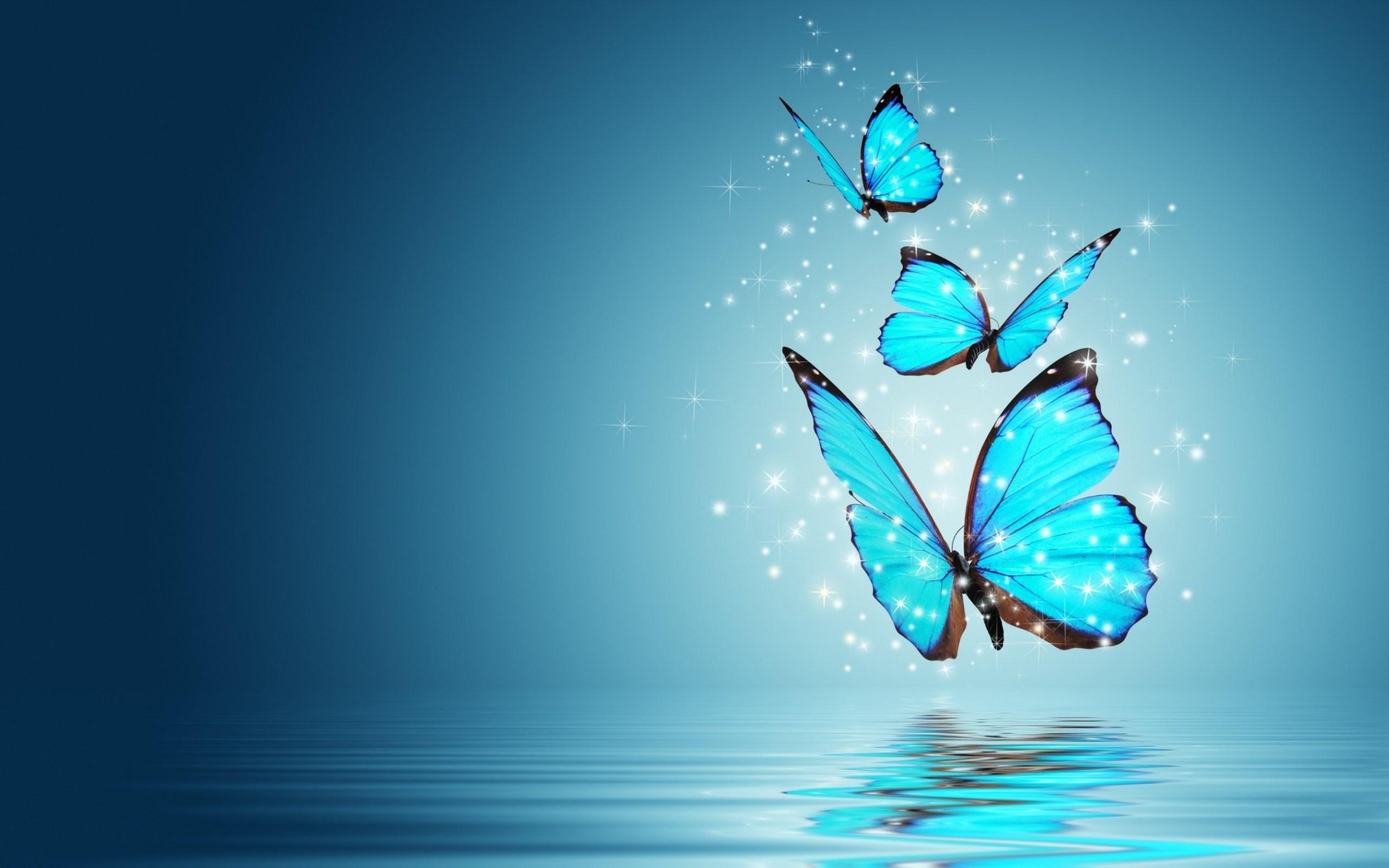 Butterflies sfondi per pc 2560x1600 id 487115 for Immagini farfalle per desktop