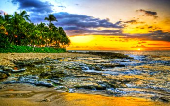 Earth - Beach Wallpapers and Backgrounds ID : 489025