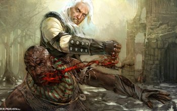 Video Game - The Witcher Wallpapers and Backgrounds ID : 492936