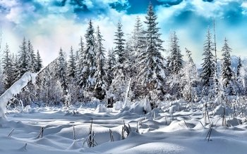 Earth - Winter Wallpapers and Backgrounds ID : 501299