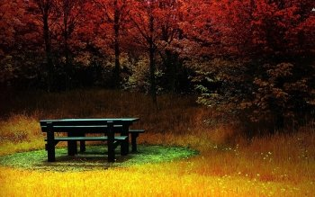 Man Made - Bench Wallpapers and Backgrounds ID : 501390
