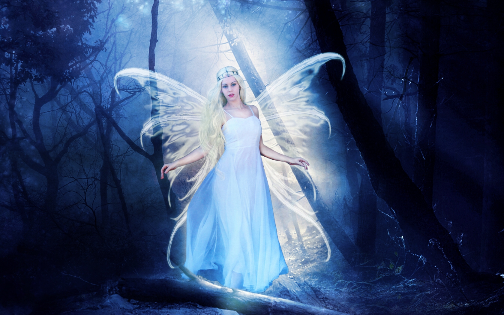 fairy of light wallpaper and background 1680x1050 id
