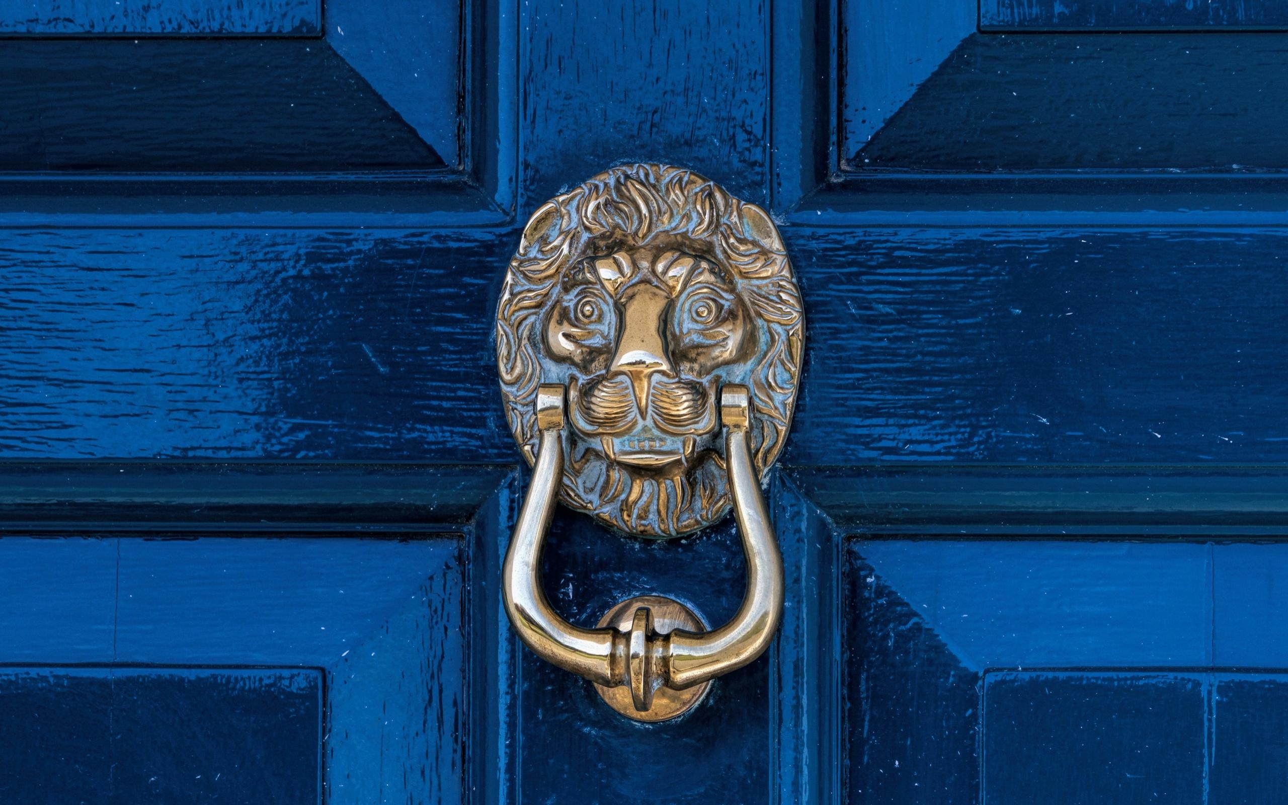 Lion Door Knocker Lion Door Knob Ideas Door Knocker