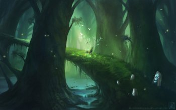 Fantasy - Forest Wallpapers and Backgrounds ID : 507356