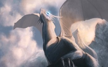 Fantasy - Dragon Wallpapers and Backgrounds ID : 517931
