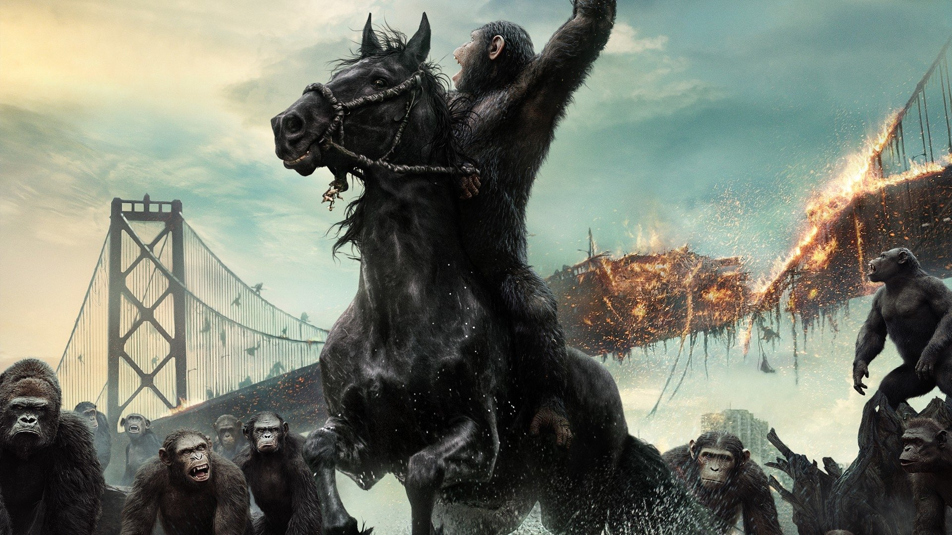 29 Dawn Of The Planet Of The Apes Hd Wallpapers Background