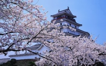 Man Made - Himeji Castle Wallpapers and Backgrounds ID : 522059
