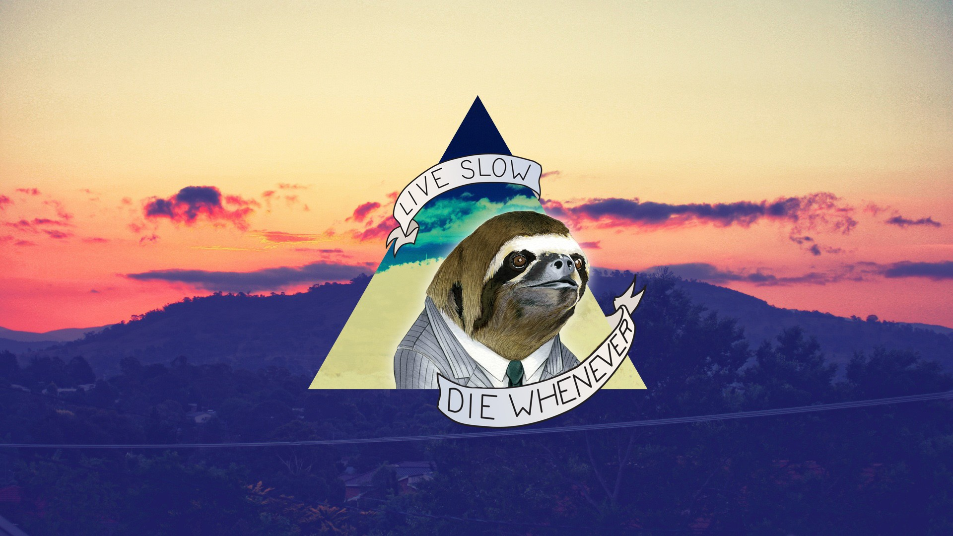 Sloth - Live Slow, Die Whenever Full HD Wallpaper and ...