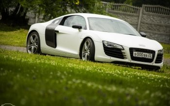 Vehicles - Audi R8 Wallpapers and Backgrounds ID : 523953